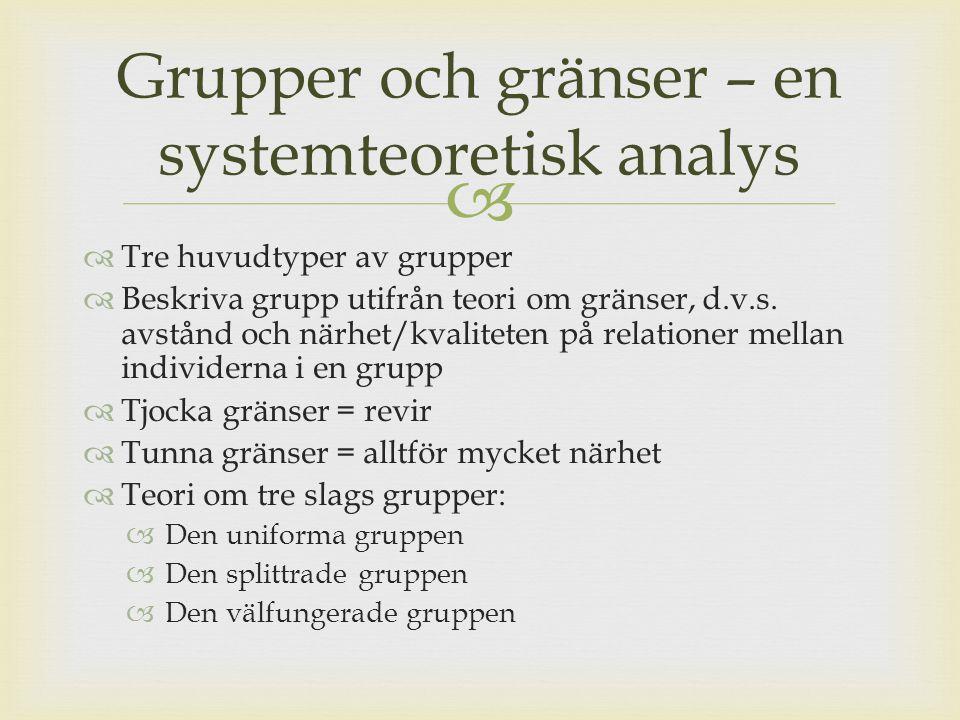 Grupper och gränser – en systemteoretisk analys