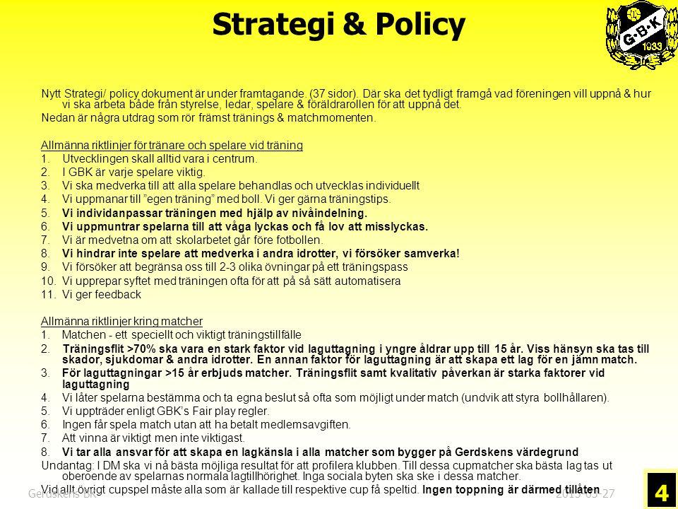 Strategi & Policy