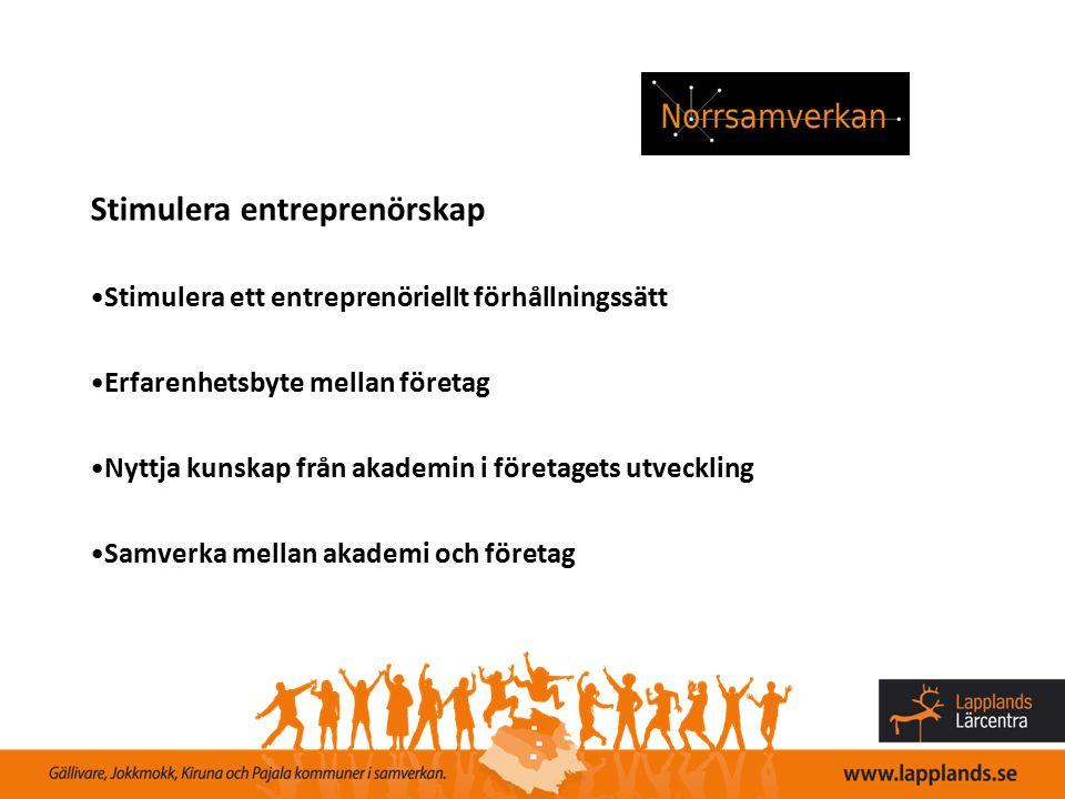 Stimulera entreprenörskap