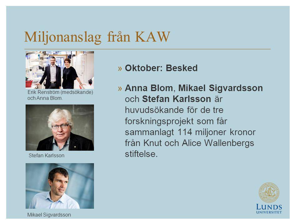 Miljonanslag från KAW Oktober: Besked