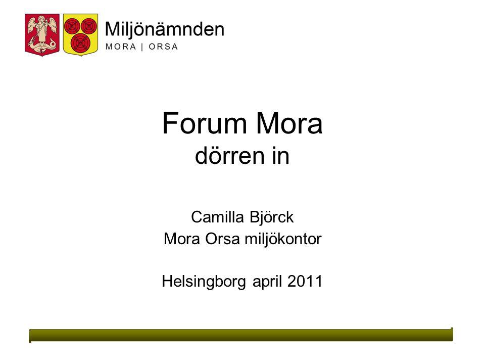Camilla Björck Mora Orsa miljökontor Helsingborg april 2011
