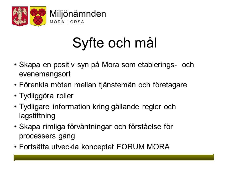 Syfte och mål Skapa en positiv syn på Mora som etablerings- och evenemangsort. Förenkla möten mellan tjänstemän och företagare.