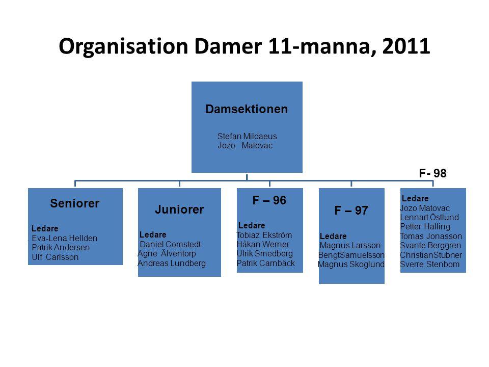 Organisation Damer 11-manna, 2011
