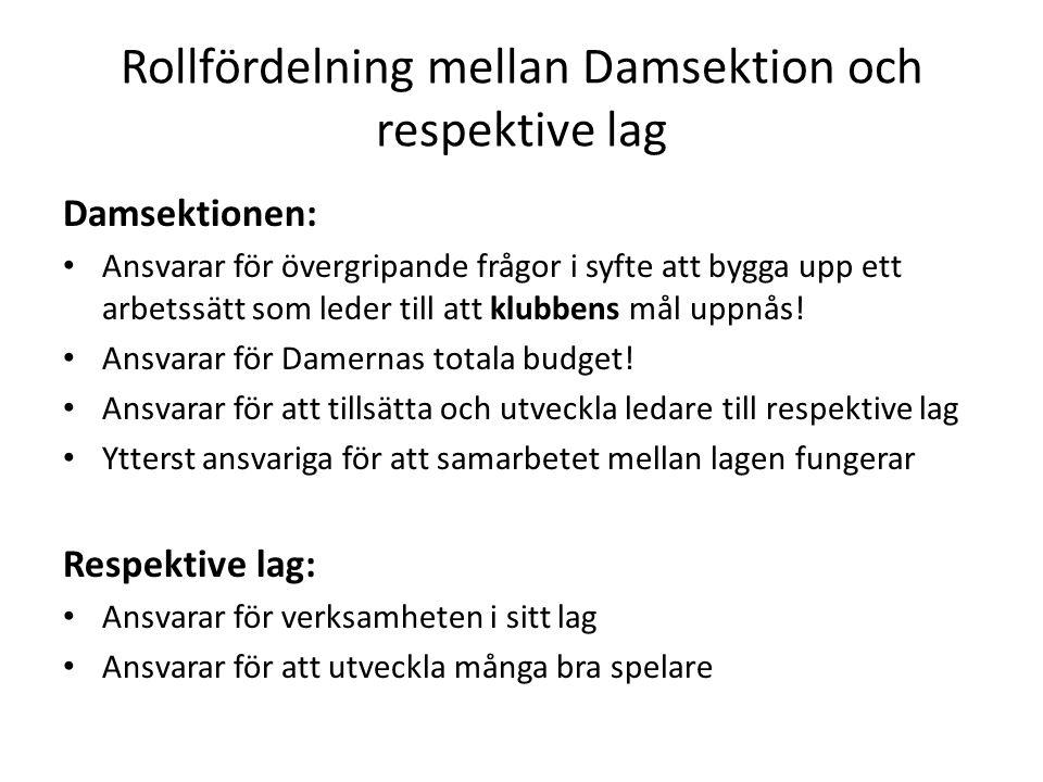 Rollfördelning mellan Damsektion och respektive lag