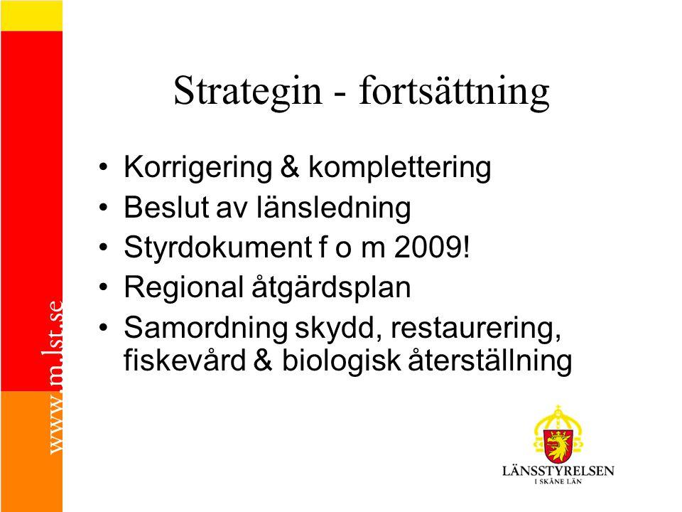 Strategin - fortsättning