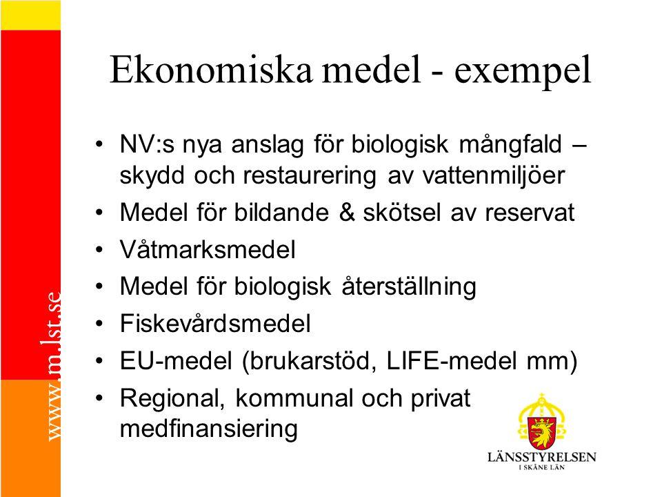 Ekonomiska medel - exempel