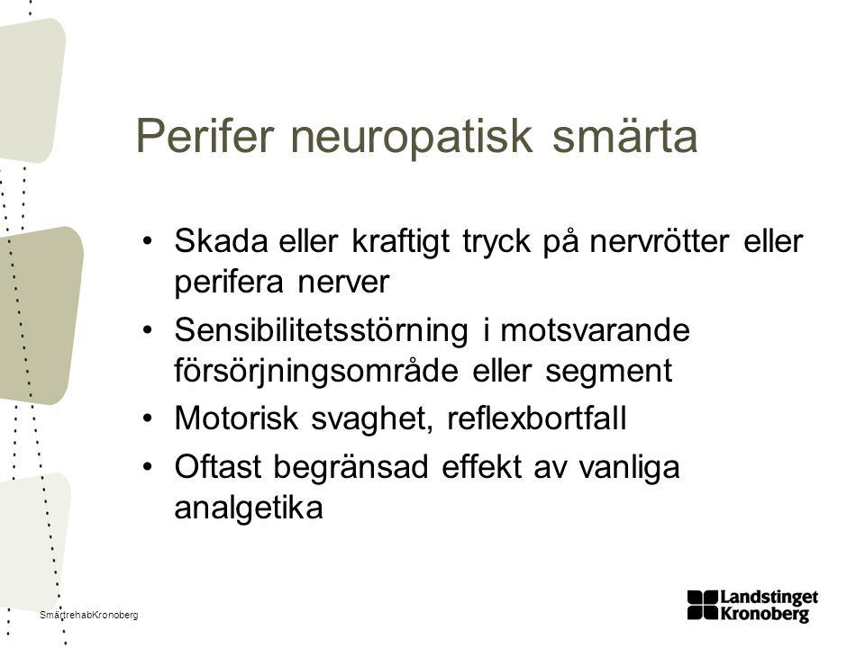 Perifer neuropatisk smärta