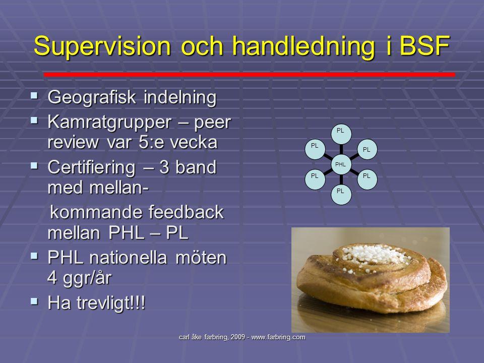 Supervision och handledning i BSF