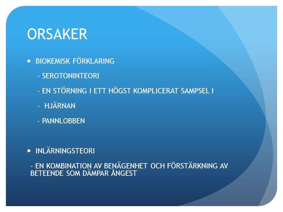 ORSAKER BIOKEMISK FÖRKLARING - SEROTONINTEORI