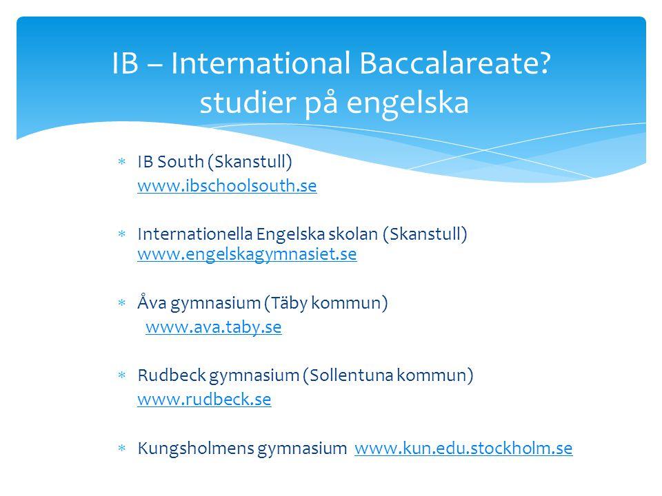 IB – International Baccalareate studier på engelska