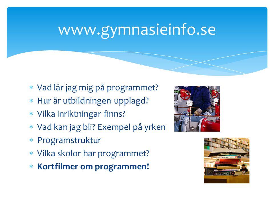 www.gymnasieinfo.se Vad lär jag mig på programmet