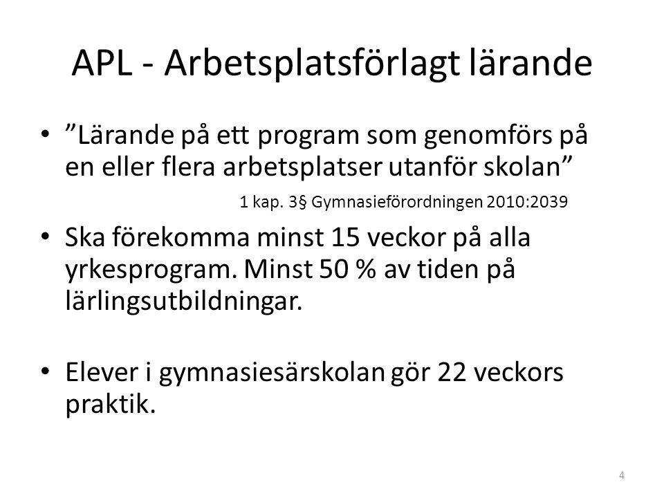 APL - Arbetsplatsförlagt lärande