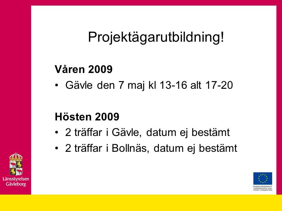 Projektägarutbildning!