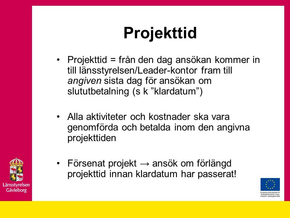 Projekttid