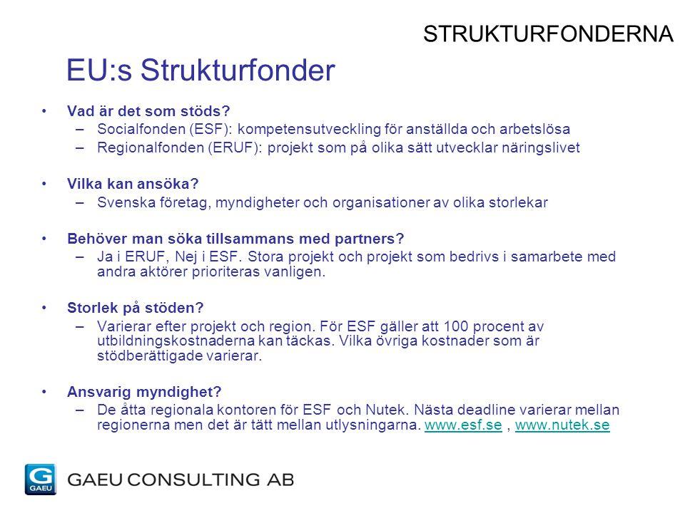 EU:s Strukturfonder STRUKTURFONDERNA Vad är det som stöds