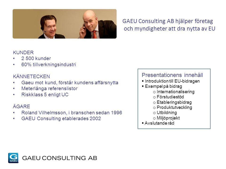 GAEU Consulting AB hjälper företag och myndigheter att dra nytta av EU