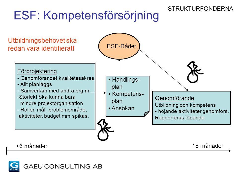 ESF: Kompetensförsörjning