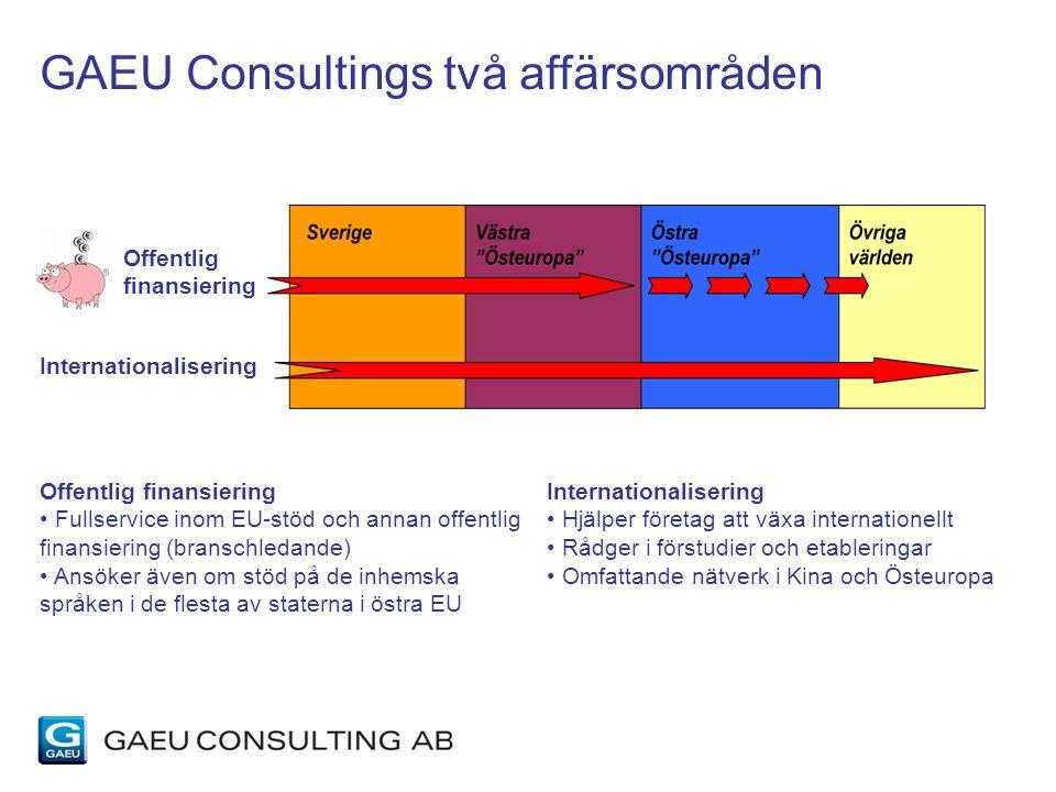 GAEU Consultings två affärsområden