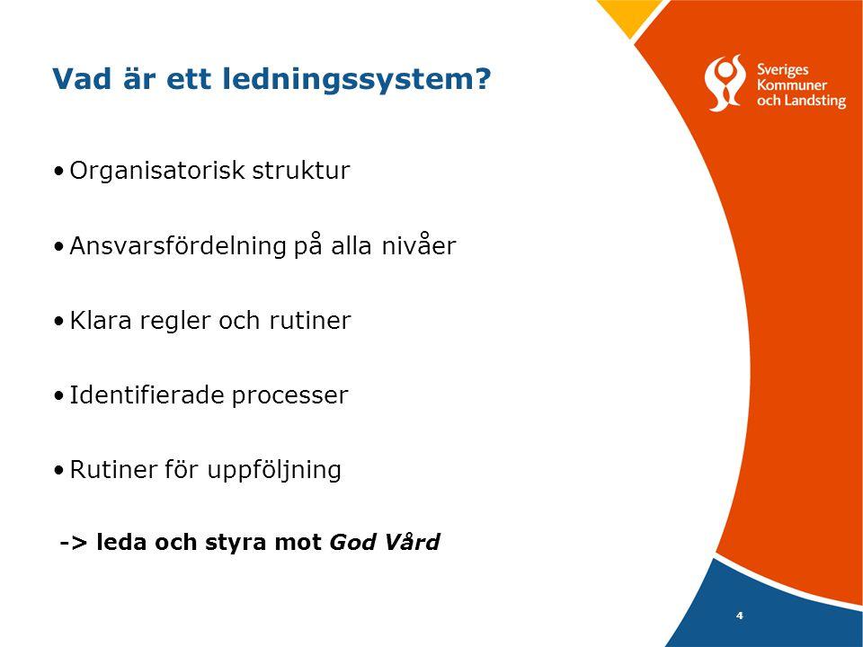 Vad är ett ledningssystem