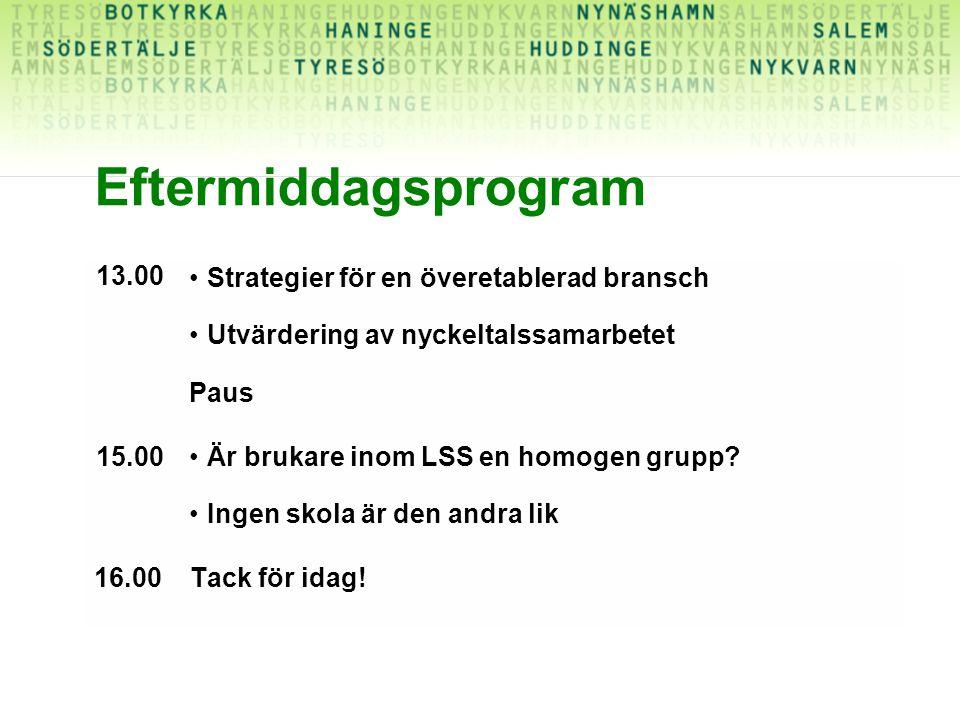 Eftermiddagsprogram 13.00 Strategier för en överetablerad bransch