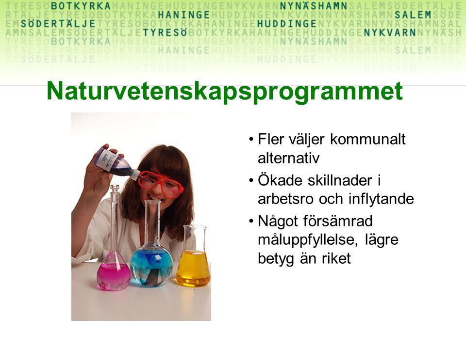 Naturvetenskapsprogrammet