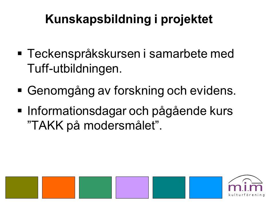 Kunskapsbildning i projektet