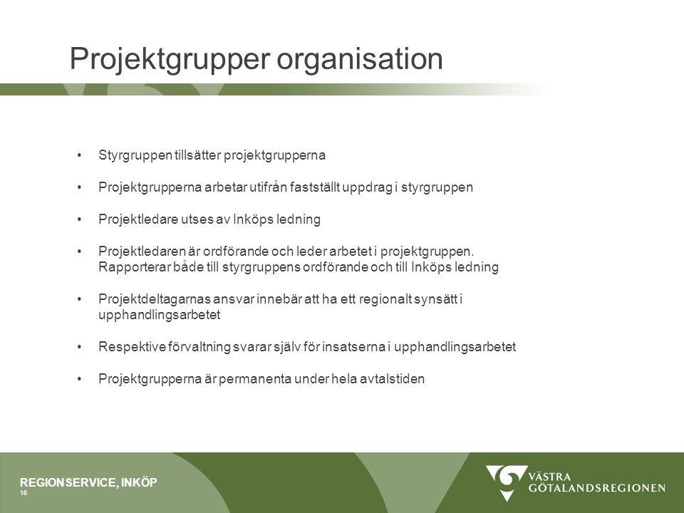 Projektgrupper organisation