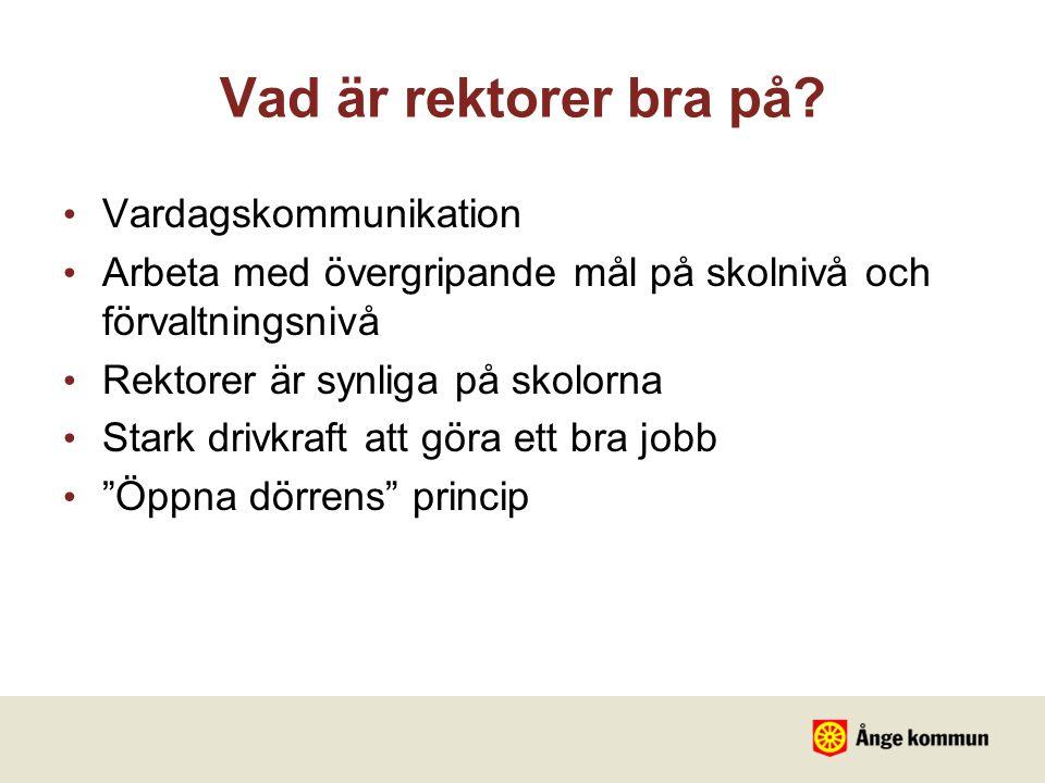 Vad är rektorer bra på Vardagskommunikation