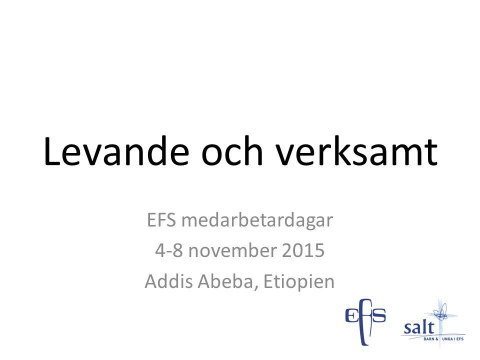 EFS medarbetardagar 4-8 november 2015 Addis Abeba, Etiopien