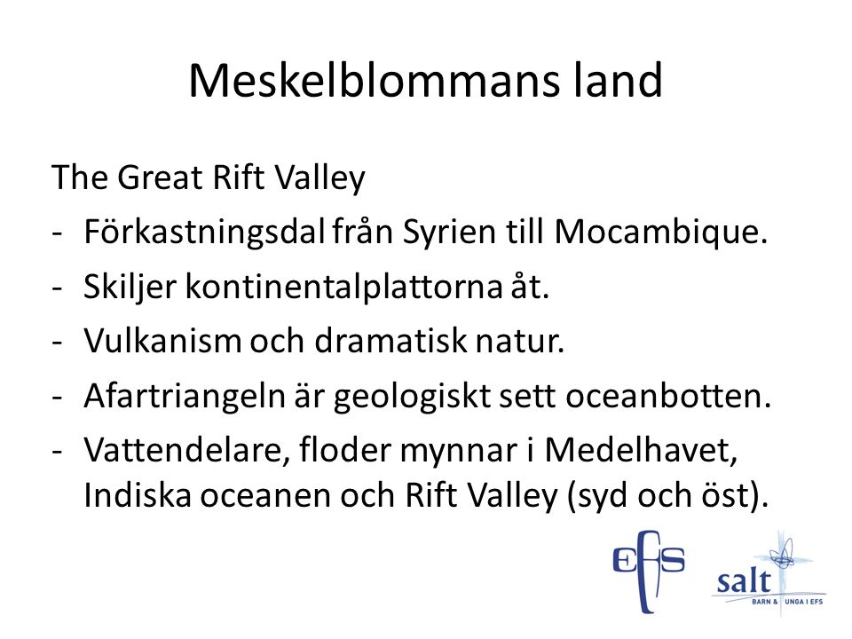 Meskelblommans land The Great Rift Valley