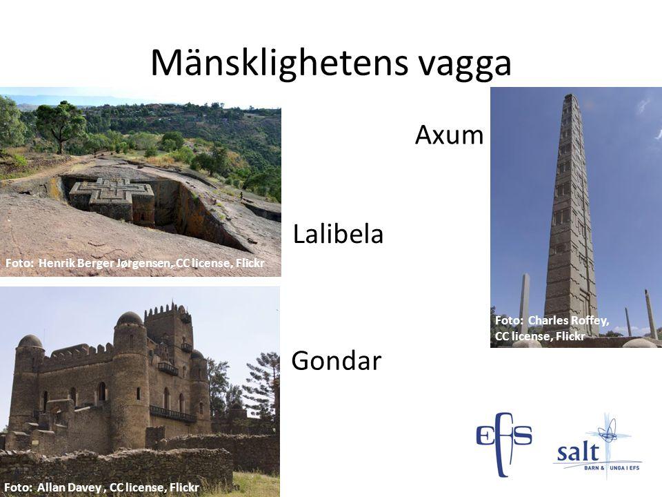 Mänsklighetens vagga Axum Lalibela Gondar
