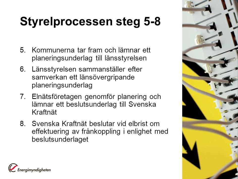 Styrelprocessen steg 5-8