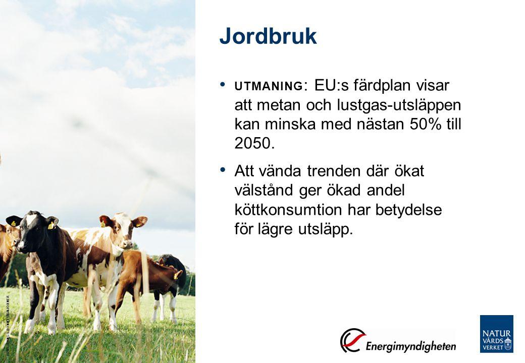 Jordbruk UTMANING: EU:s färdplan visar att metan och lustgas-utsläppen kan minska med nästan 50% till 2050.