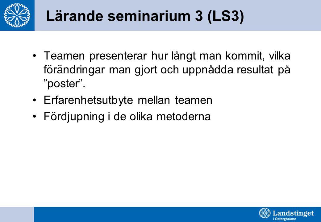 Lärande seminarium 3 (LS3)