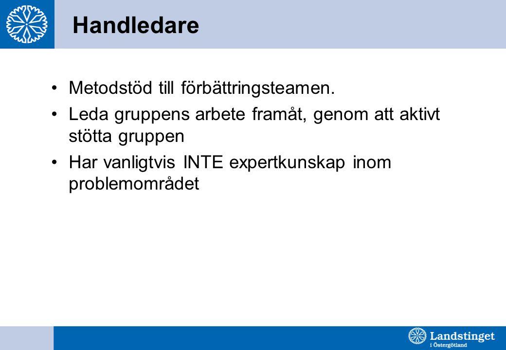 Handledare Metodstöd till förbättringsteamen.