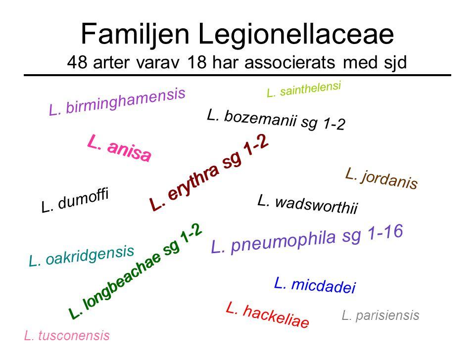 Familjen Legionellaceae 48 arter varav 18 har associerats med sjd