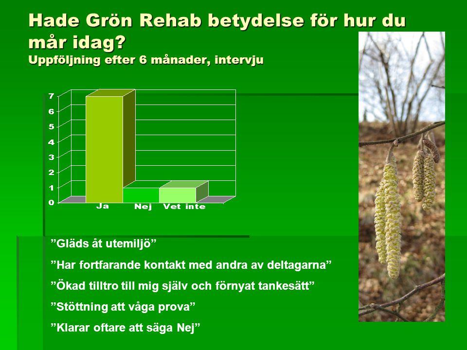Hade Grön Rehab betydelse för hur du mår idag
