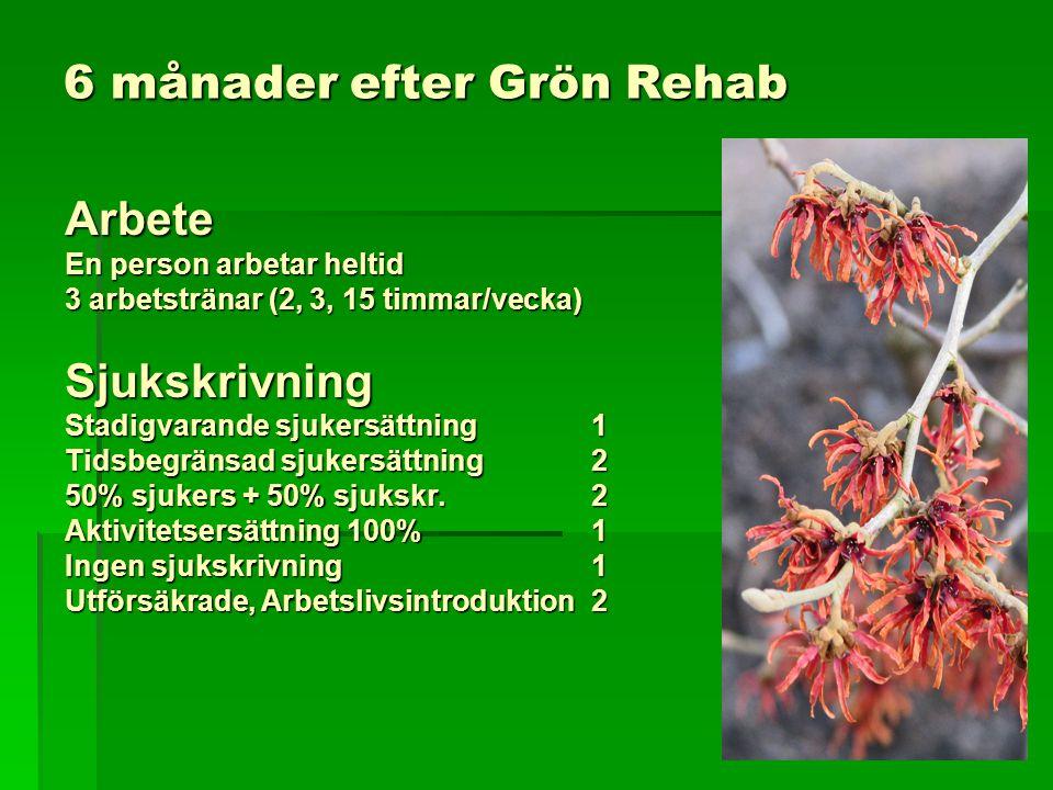 6 månader efter Grön Rehab