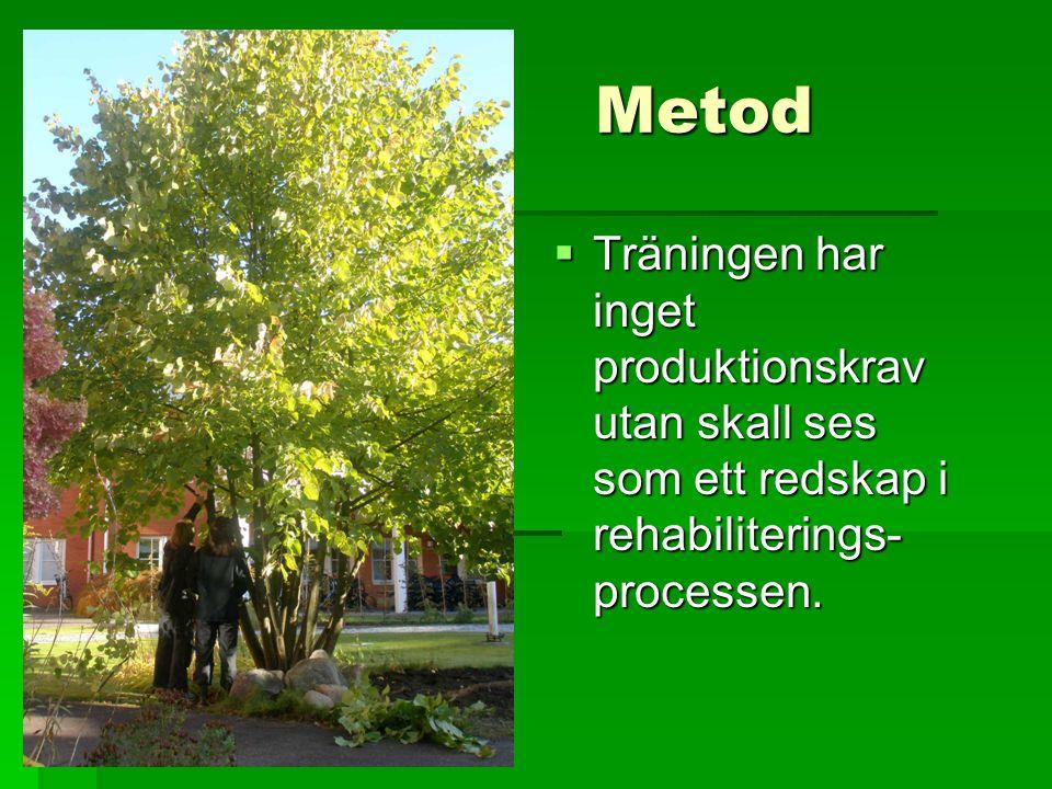 Metod Träningen har inget produktionskrav utan skall ses som ett redskap i rehabiliterings-processen.