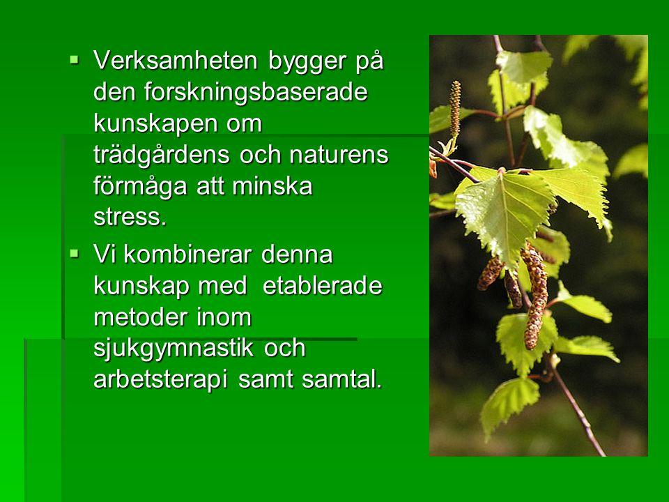 Verksamheten bygger på den forskningsbaserade kunskapen om trädgårdens och naturens förmåga att minska stress.