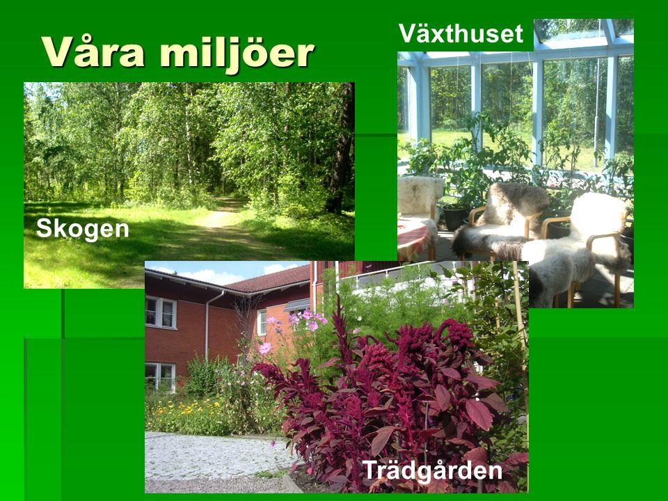 Våra miljöer Växthuset Skogen Skogen Trädgården