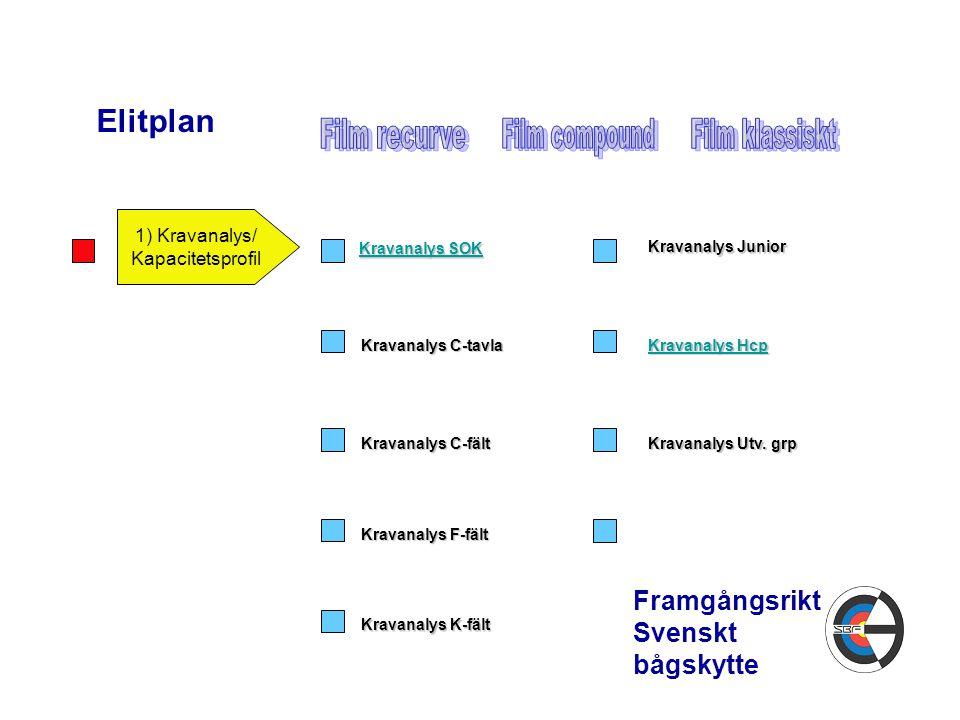 1) Kravanalys/ Kapacitetsprofil