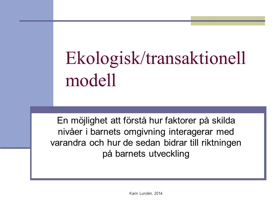 Ekologisk/transaktionell modell