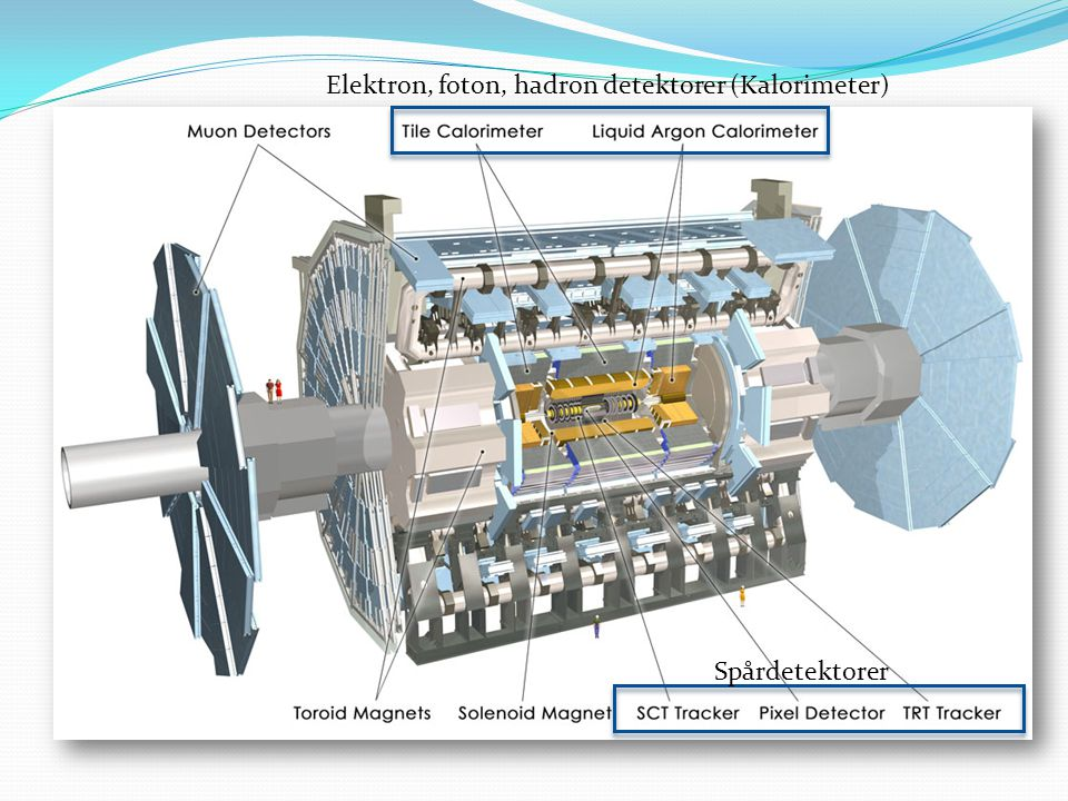 Elektron, foton, hadron detektorer (Kalorimeter)