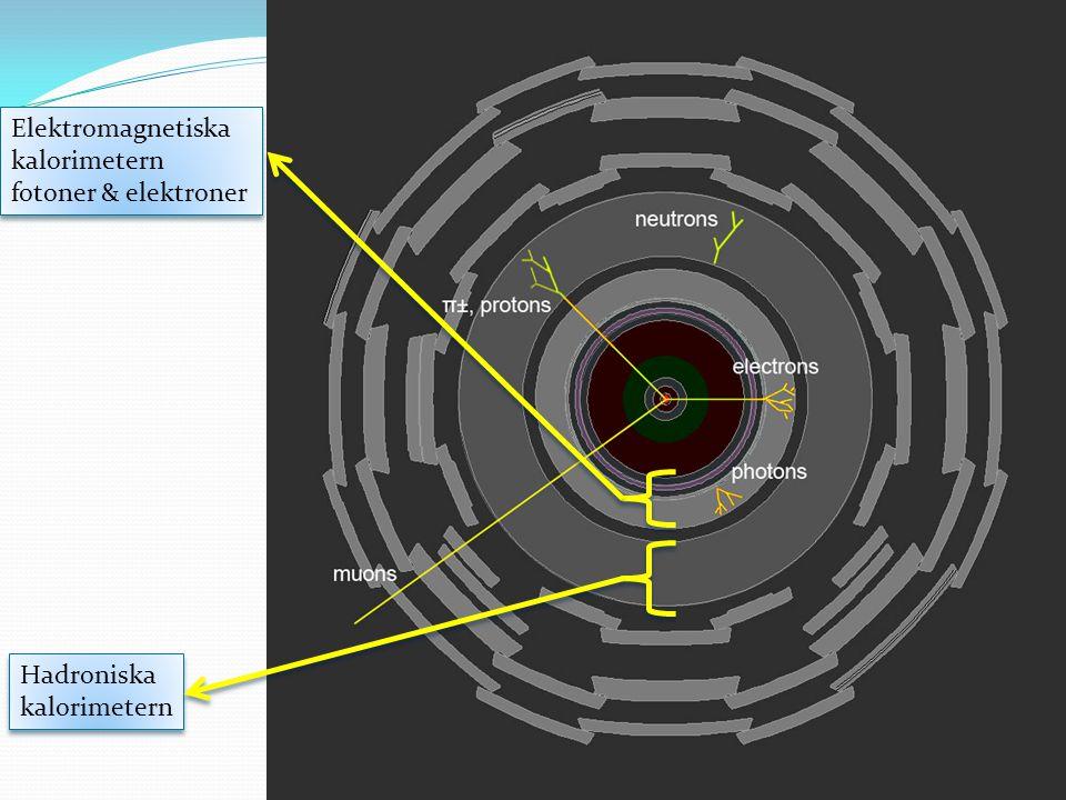 Elektromagnetiska kalorimetern fotoner & elektroner Hadroniska kalorimetern