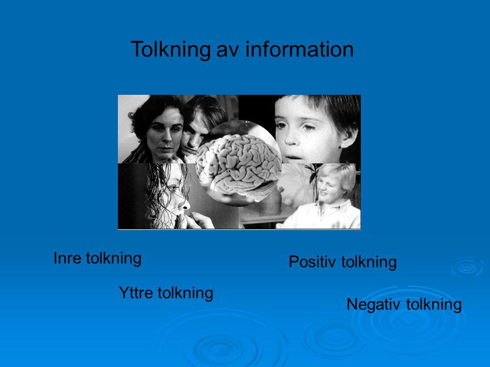 Tolkning av information