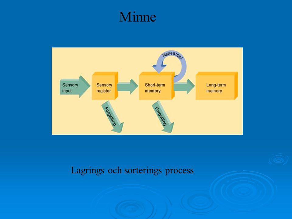 Minne Lagrings och sorterings process