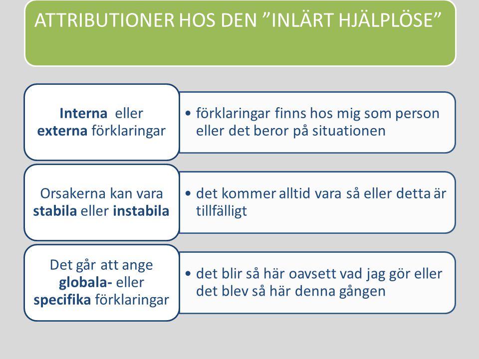 ATTRIBUTIONER HOS DEN INLÄRT HJÄLPLÖSE
