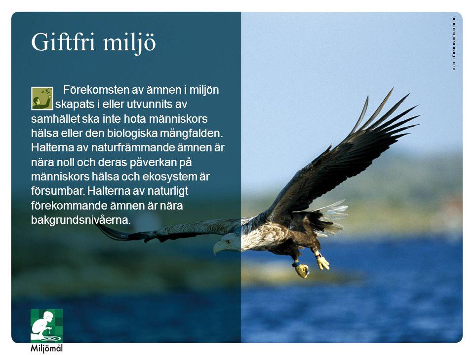 Giftfri miljö foto: Göran Nyrén/JOHNER.