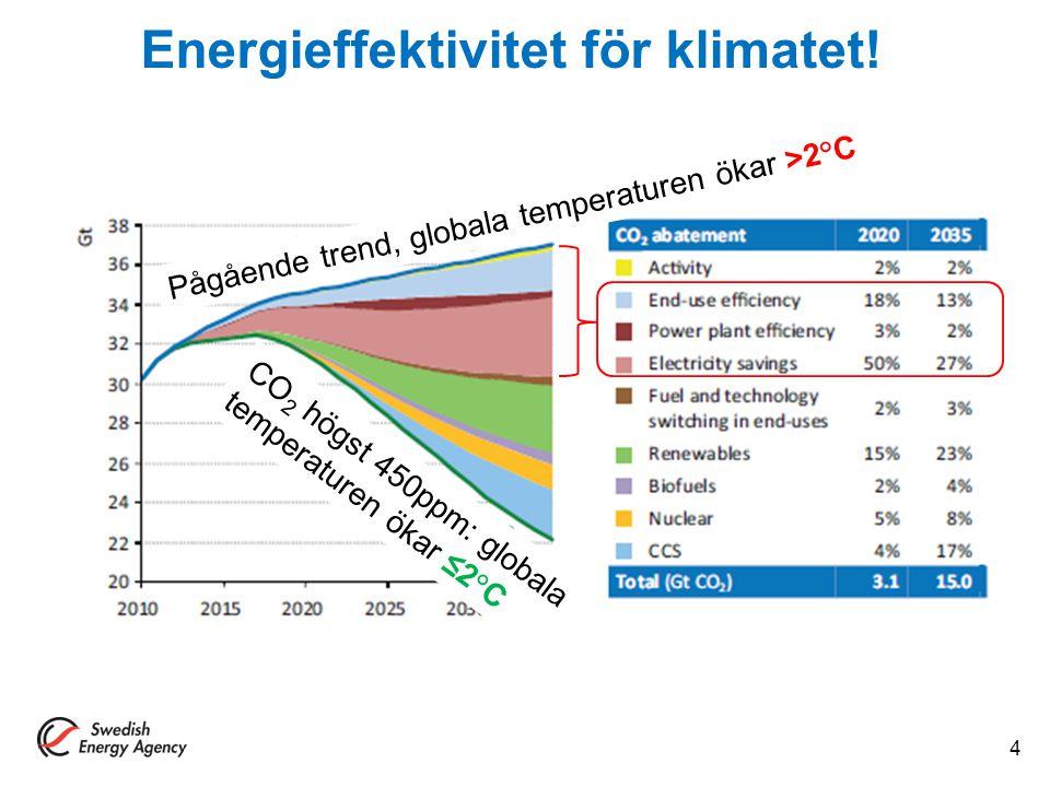 Energieffektivitet för klimatet!